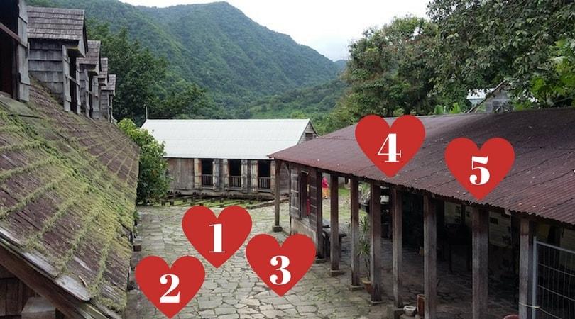 Visite à l'Habitation La Grivelière : mes 5 coups de coeur