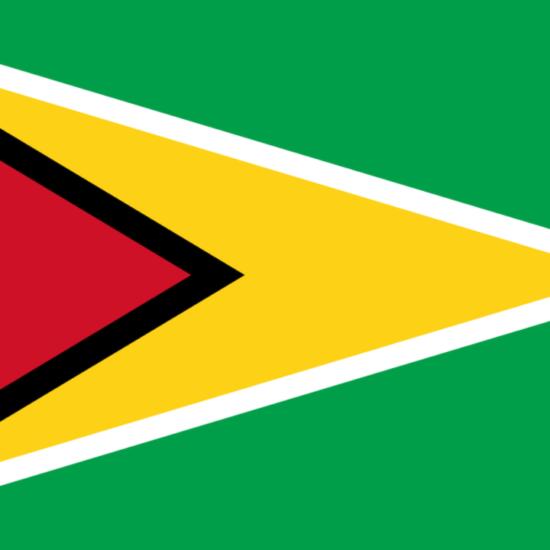 Flashback Caraibe : le feuilleton de l'élection présidentielle du Guyana en 2020
